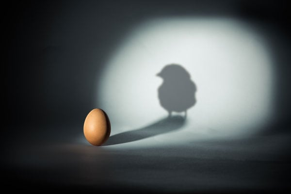 The Paradox of Leadership  (AND not OR)